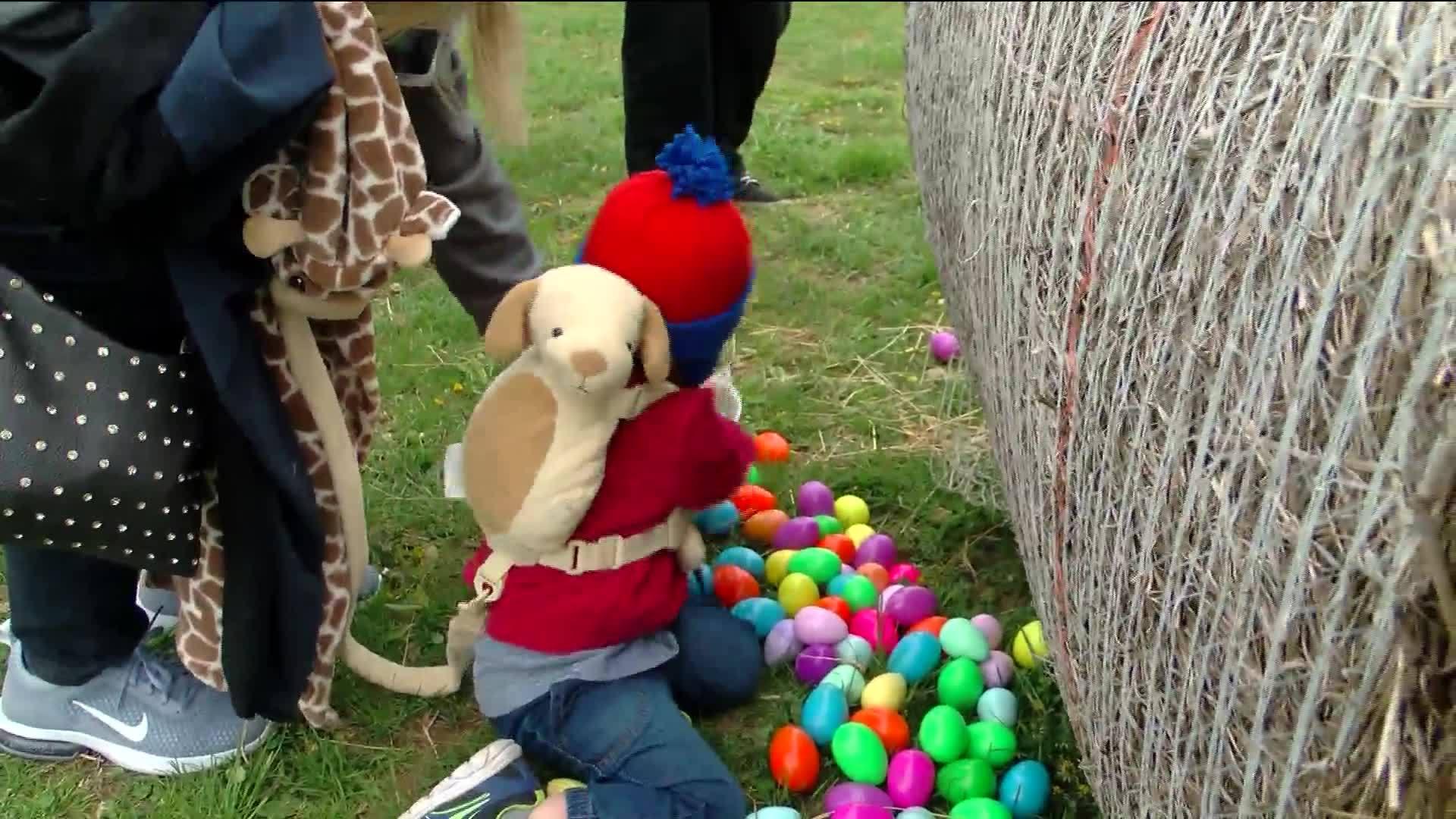 Easter_egg_hunt_featuring_twenty_thousan_6_20190414031639