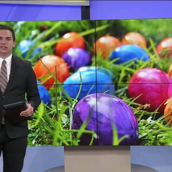 Nixa_holds_Easter_egg_hunt_for_adults_2_20190421022640