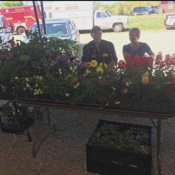 Hickory County Farmers Market - 5/1/19