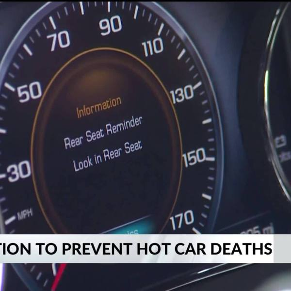 Lawmakers_working_to_prevent_hot_car_dea_6_20190522225620