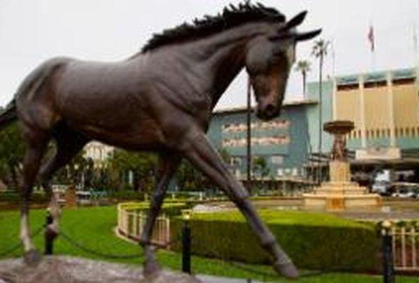 santa anita horse_1558198420412.jpg.jpg