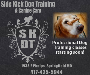 Side Kick Dog Training 300x250