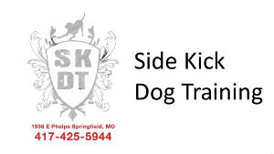 Side Kick Dog Training