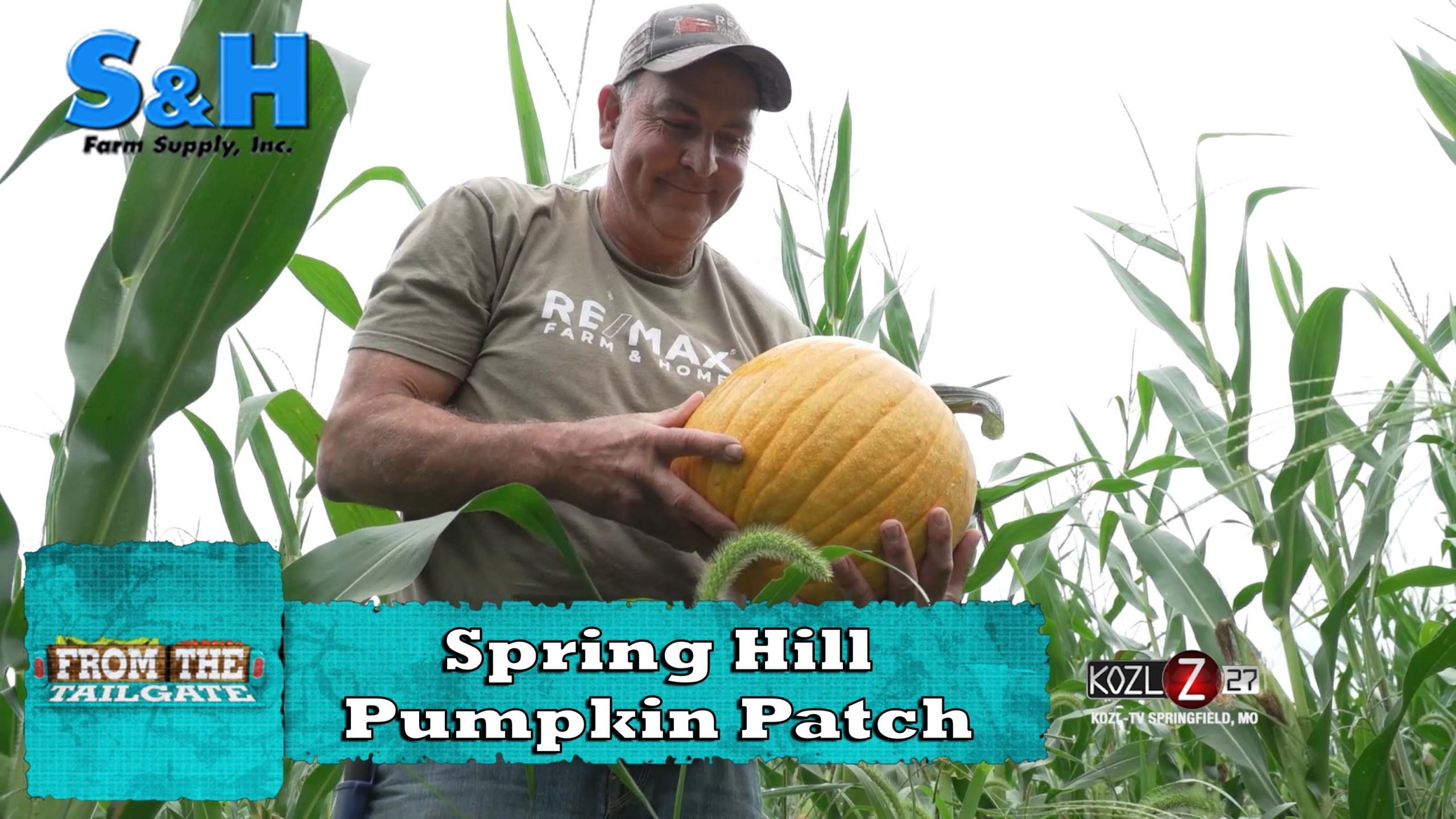 Spring Hill Pumpkin Patch