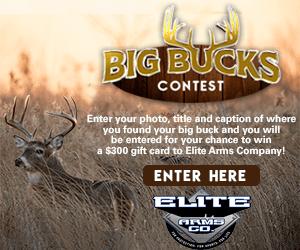 elite Arms Big Buck Contest
