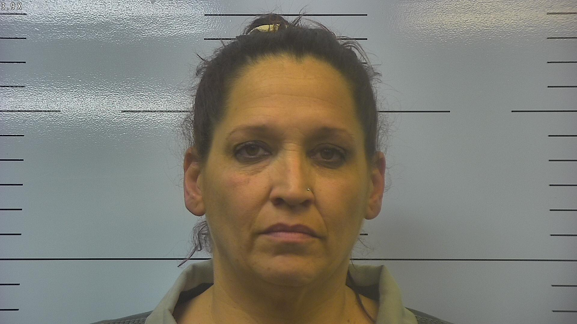 nevada woman arrested for meth